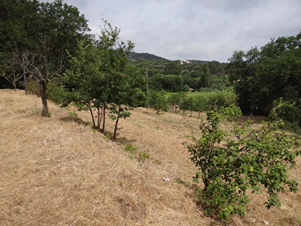 Baugrundstück zwischen dem Dorf Ramatuelle und den Stränden von Pamelonne